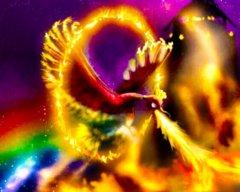 Phoenix15