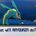 """Learn to Fly"" – Mega Rayquaza, Trevenant/Accelgor, Speed Seismitoad, and the Mobile Realm"