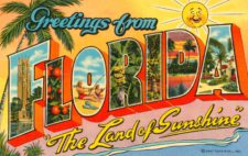 greetings-from-florida-postcard