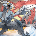 """Denver Digs"" – Zoroark/Garbodor, Sceptile/Decidueye, and White Kyurem/Articuno for Denver"